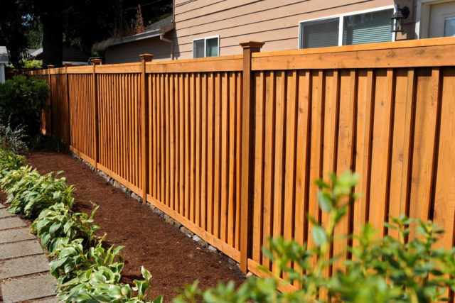 Fence-Stain-Image-2
