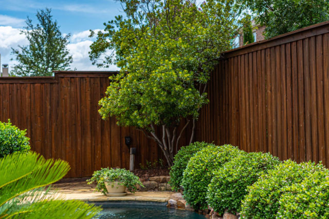 Protecting Pools and Surfaces From Stain Over-run