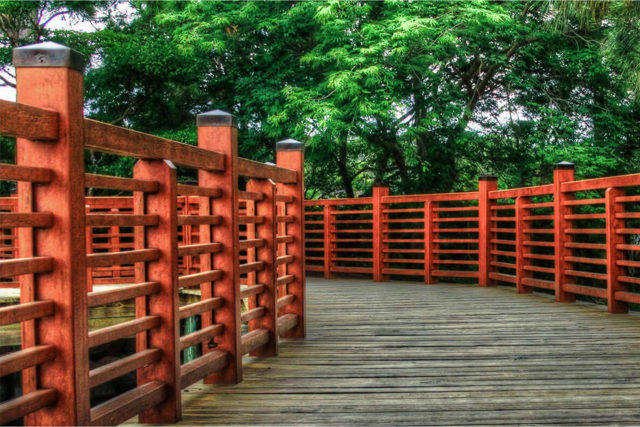 Fence-Stain-Image-9
